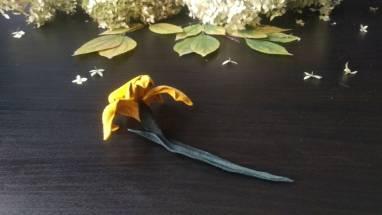 Брошь цветок нарцисс из натуральной кожи ручной работы