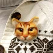 Брошка из шерсти рыжий кот