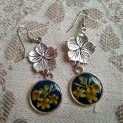Серьги с сухоцветами.