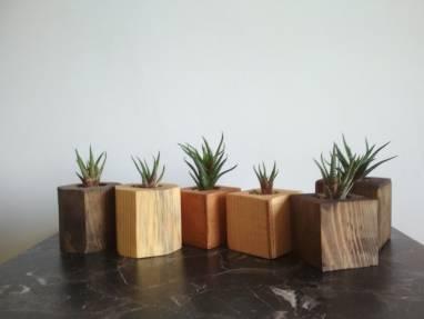 Кашпо для суккулентов и кактусов из сосны ручной работы