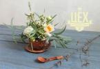 Флористическая композиция в чашке