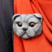 Брошка из шерсти вислоухий кот