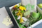 Подарок в зелёном цвете