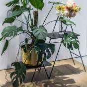 Двойная подставка для комнатных растений или книг